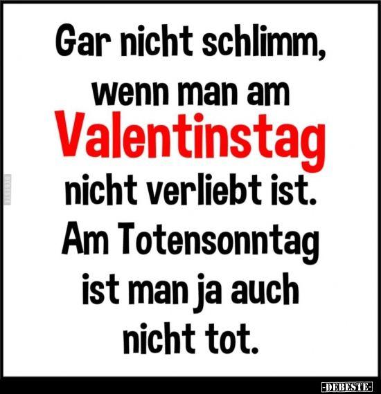 Gar nicht schlimm, wenn man am Valentinstag nicht verliebt ist.. | Lustige Bilder, Sprüche, Witze, echt lustig