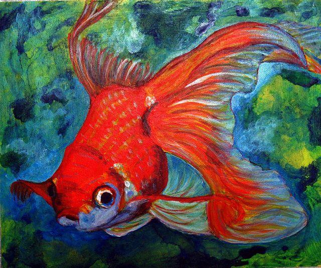 Gold fish..... | Fish art, Gold fish painting, Fish