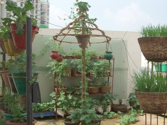 Clay pot garden on roof economy of space rooftop garden for Terrace garden in india