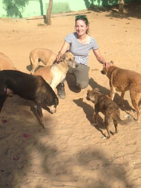 I Gave Up My Life in London To Save Street Dogs in India