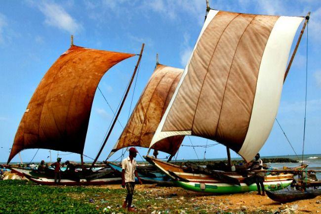 Alles over reizen door Sri Lanka