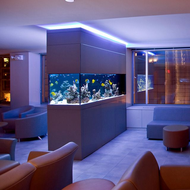 Delicieux 100 Ideas Integrate Aquarium Designs In The Wall Or In The Living Room