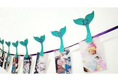 Photo of Mermaid Photo Banner, Sweet Heart First Birthday Justborn To…   | eBay