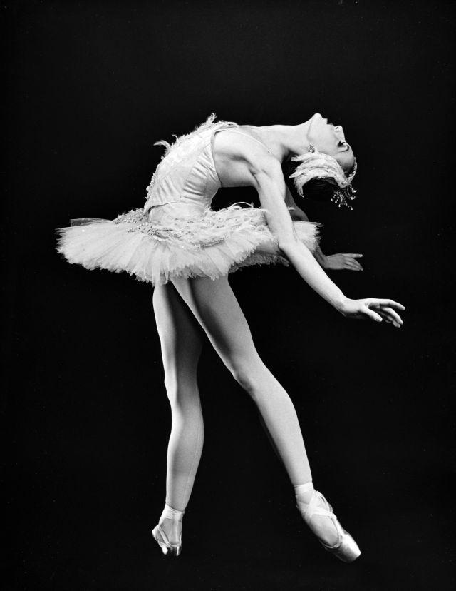нецветные фото балерина портал
