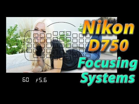 Nikon D750 Tutorial Training Focusing Systems How To Youtube
