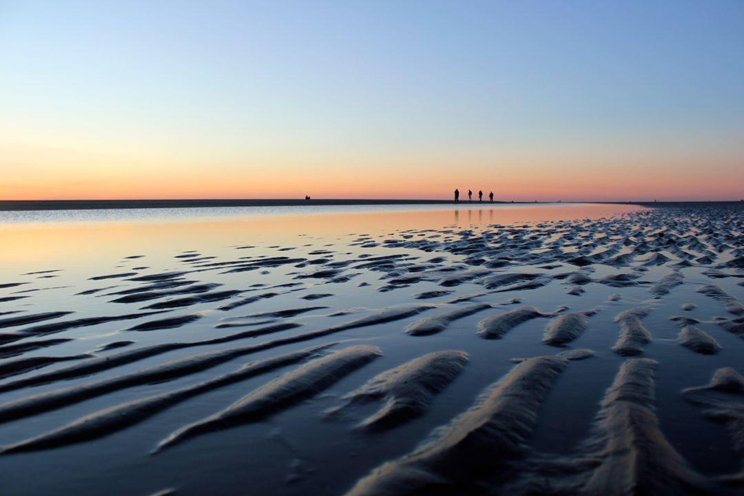 175 Synes Godt Om 7 Kommentarer Nationalpark Vadehavet Vadehavet Pa Instagram Quot Vadehavet Plads Til National Parks Sea World World Heritage Sites
