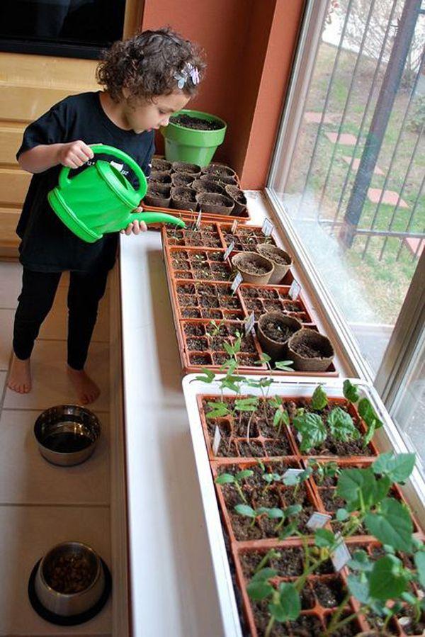 Photo of 17 jardinería interior divertida y fácil para niños