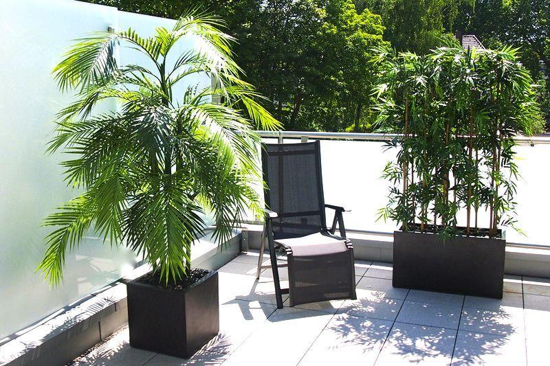 Künstliche Areca Palme Bambus Arrangement Von Bellaplanta