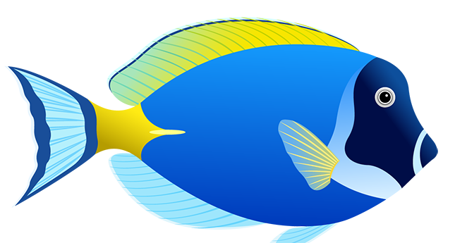 blue fish png image sb p pinterest fish and animal rh pinterest com Fried Tilapia Clip Art Tilapia Dinner