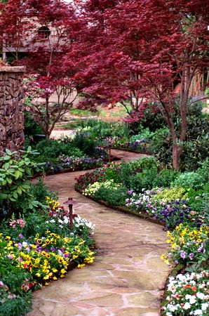 Photo of Garden path. I love the colorful delicate Pansies banking both sides of the walk…