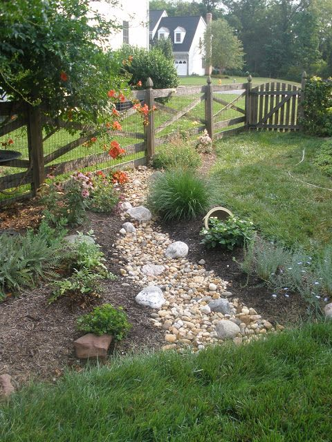 Rain Garden | Rain garden design, Rain garden, Water wise ...