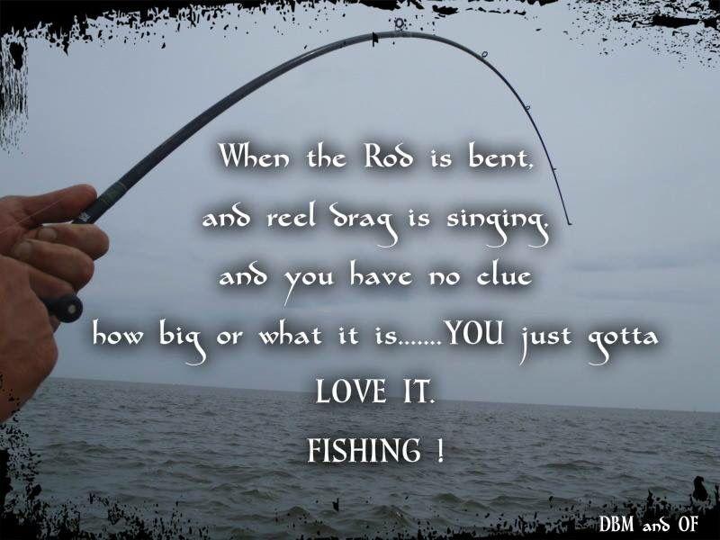 Fishing Fishing Quotes Fishing Humor Fishing Quotes Funny