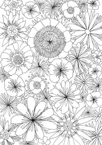 Coloring For Adults Kleuren Voor Volwassenen Doodle Pinterest