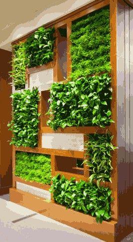 Y por qué no un jardin vertical decorando alguna pared de tu hogar