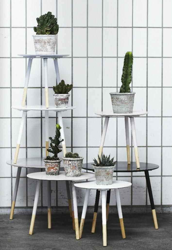 les ins parables s urs grene du danemark cactus co pinterest deco les soeurs grene et. Black Bedroom Furniture Sets. Home Design Ideas
