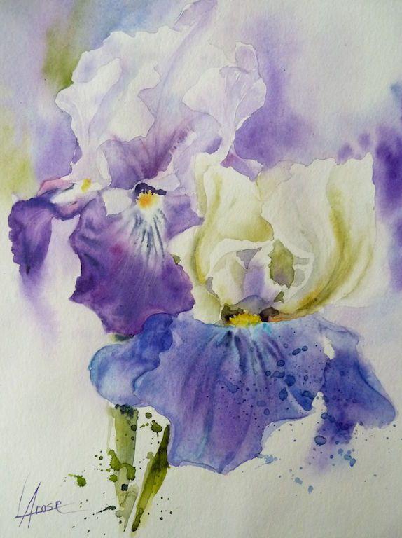 Aquarelle Iris 30x40 2 Aquarelle Fleurs Coquelicots Peinture