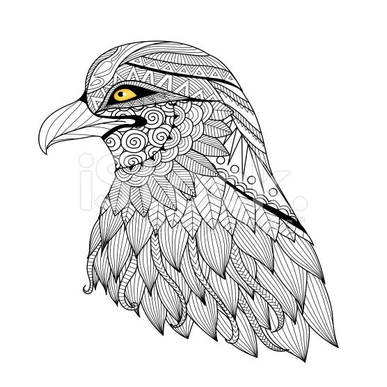 Drawing eagle for coloring book for adult Eagle - new eagles to coloring pages