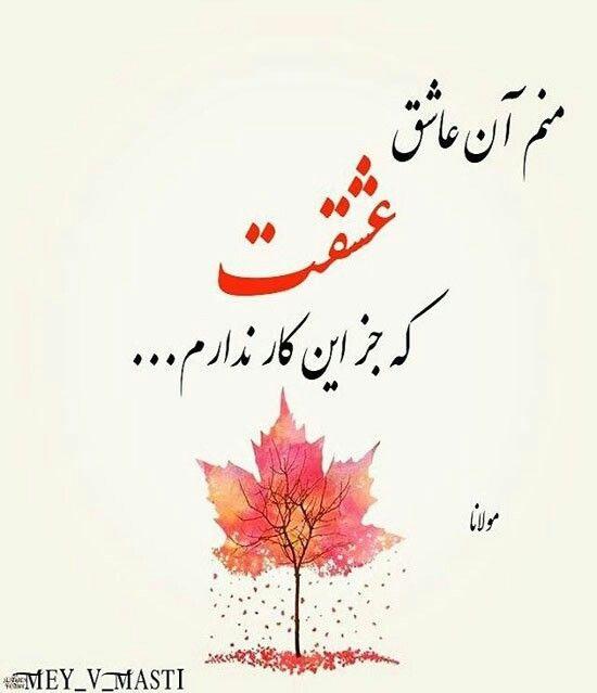 مولانا منم آن عاشق عشقت که جزاین کار ندارم Persian Poetry Persian Quotes Persian Poem