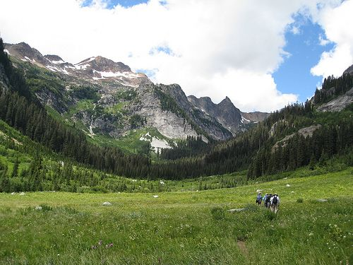 Give Me Sweet Simplicity North Cascades Nature Hikes California Travel
