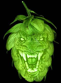 ♪♫•*¨*• Oh no, they say he's got to go go go Hopzilla!!! .•*¨*•♫♪  #Beer #IPA