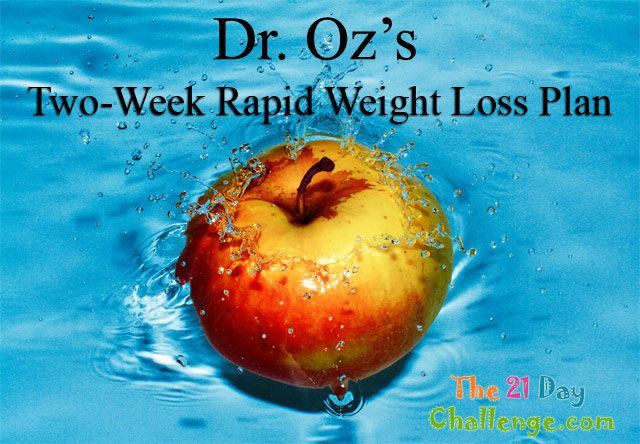 dr  oz u0026 39 s two week rapid weight loss plan  meal plan