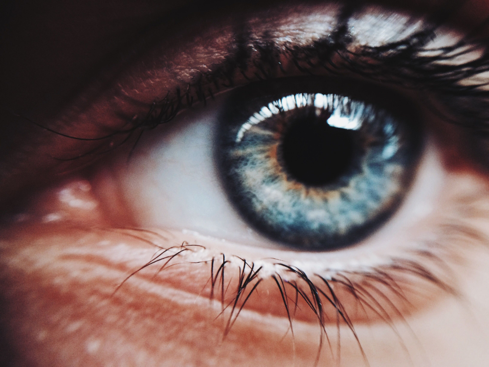 How Does Macular Degeneration Cause Blindness? in 2020 ...