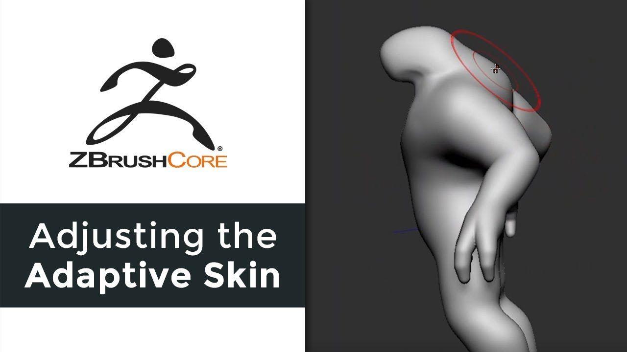 Zbrush Adjusting Adaptive Skin Askzbrush