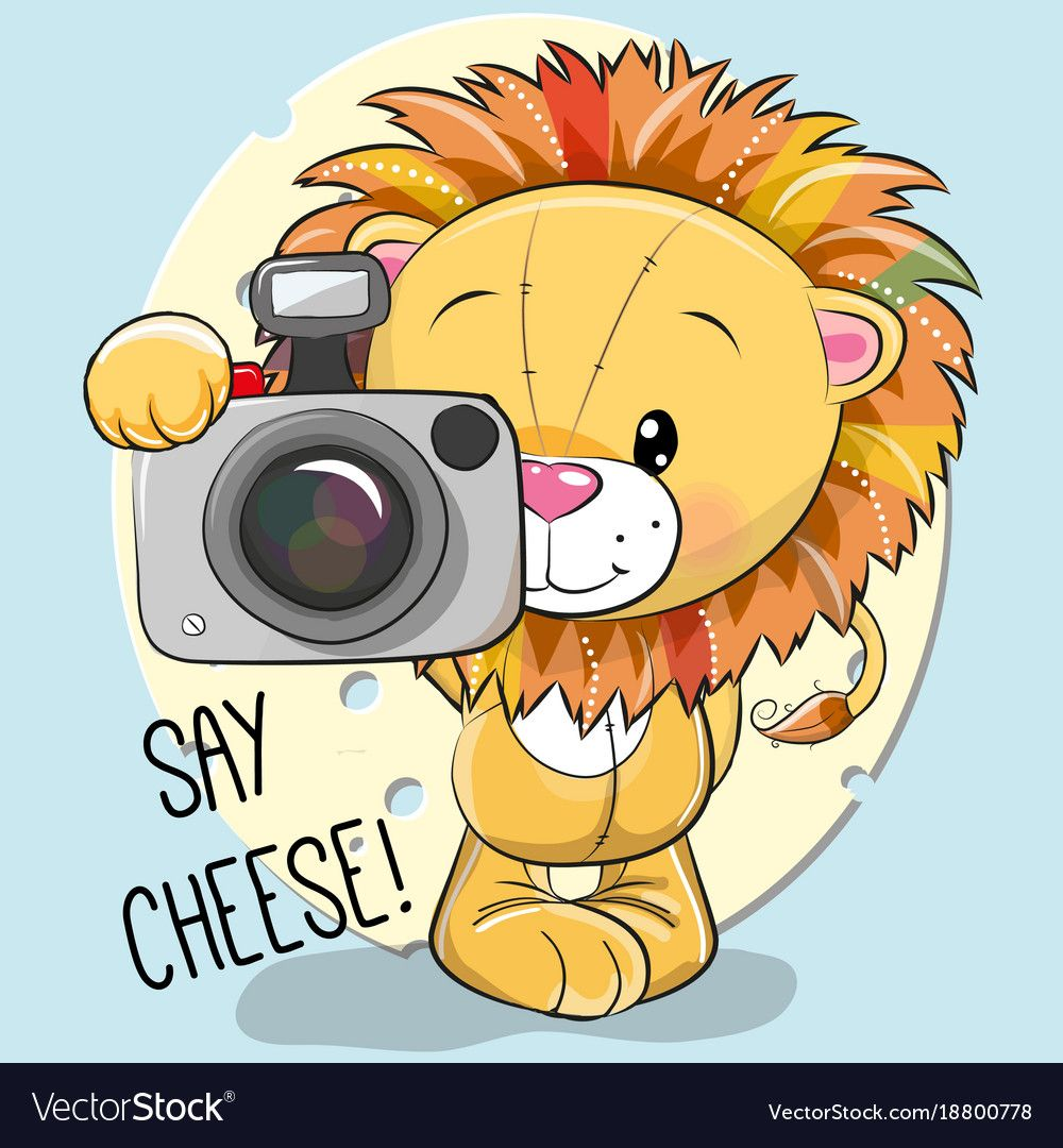 Cute Cartoon Lion With A Camera Royalty Free Vector Image Cartoon Lion Cute Cartoon Pictures Cute Cartoon