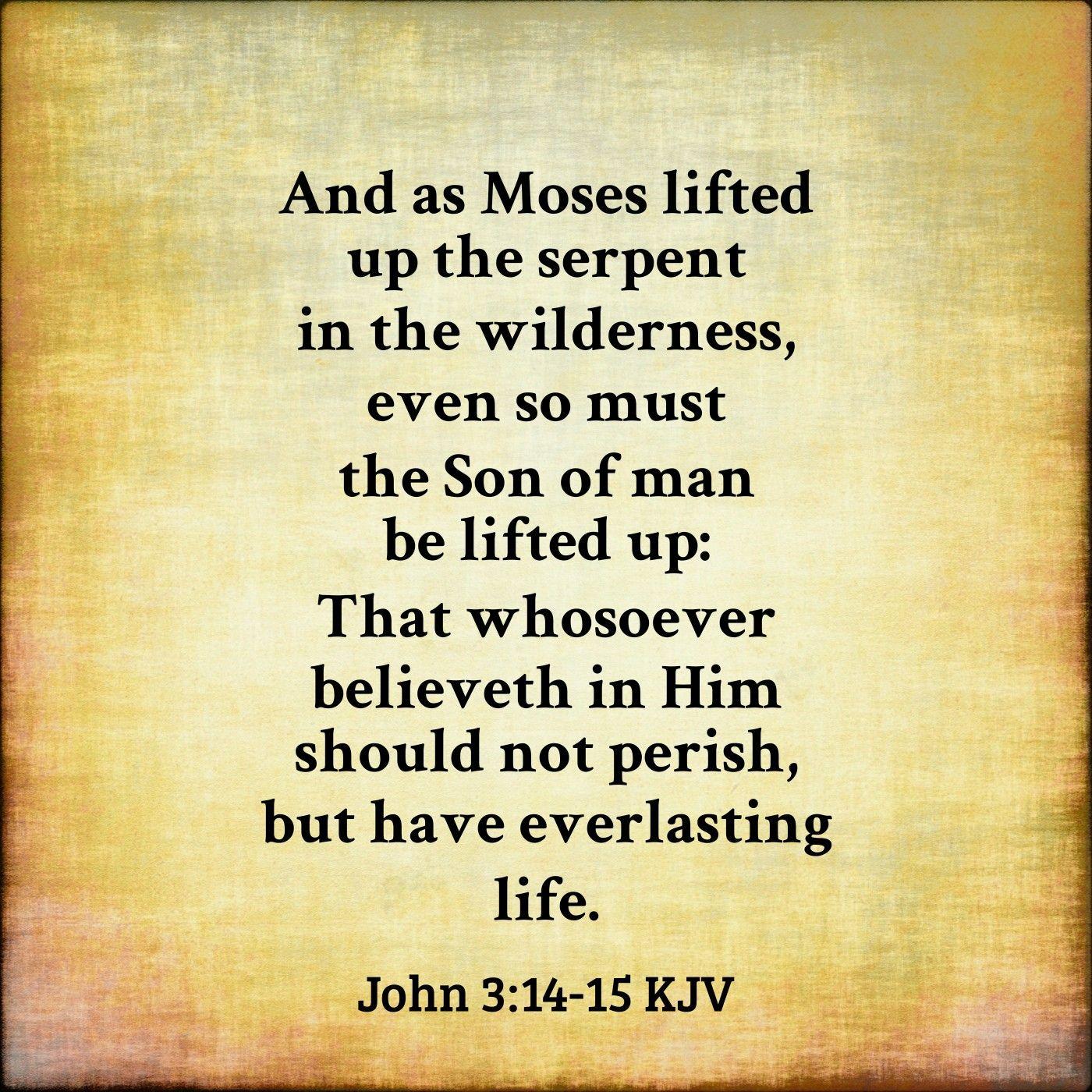 John 3:14-15 KJV | Kjv, Words, Word of god