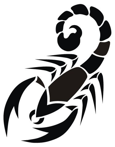scorpion tattoo designs clipart free clipart drawing pinterest rh pinterest com scorpion clip art black and white scorpion clip art images