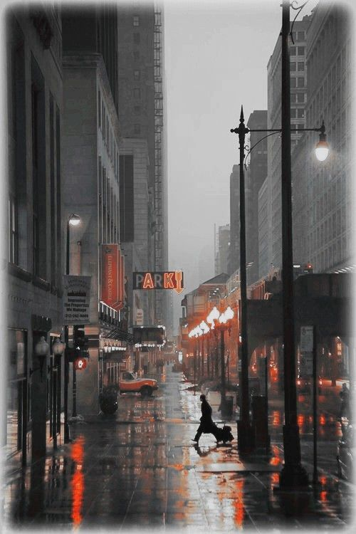 Rainy streets in the city
