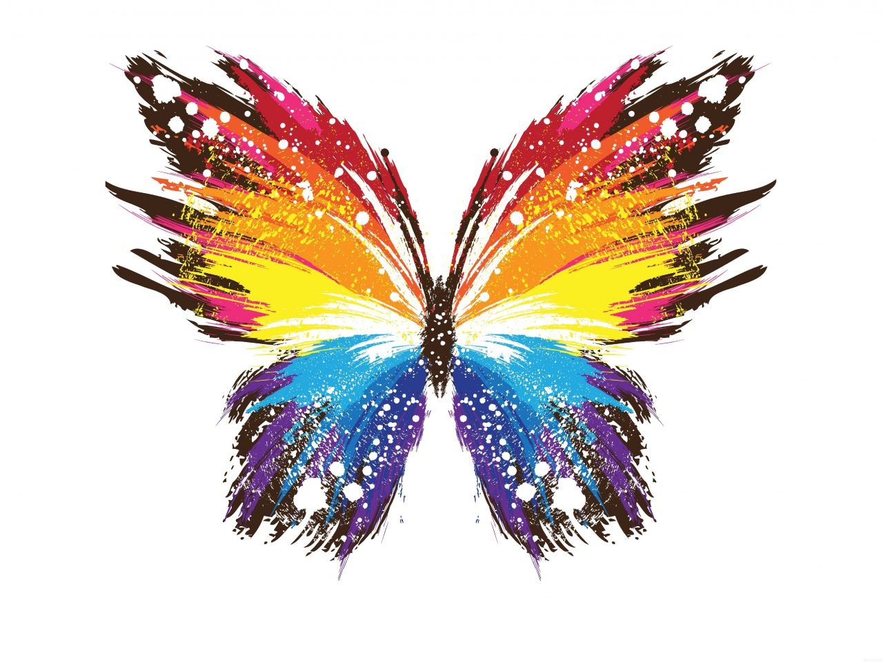 borboleta vetor - Pesquisa Google