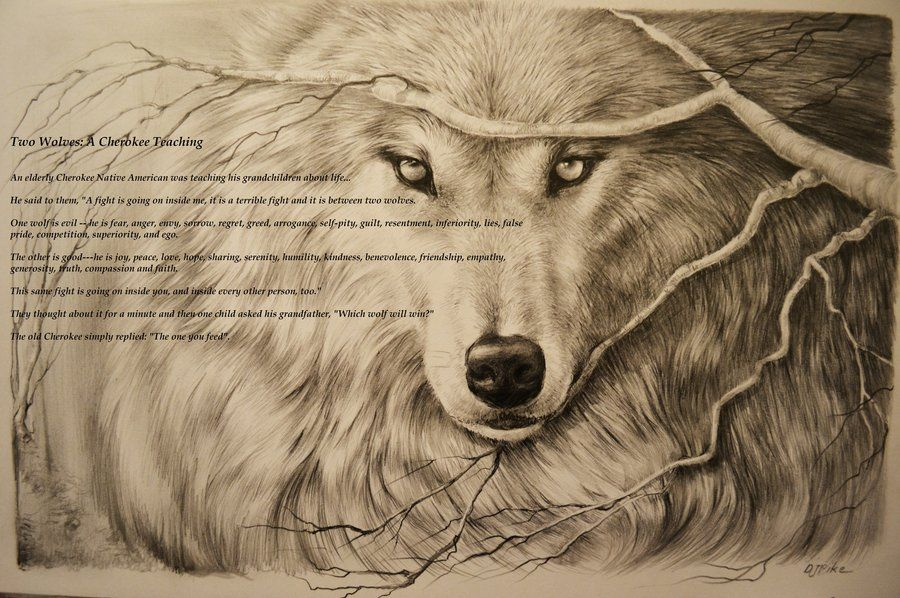 ac7a68d3a cherokee art drawings - Google Search | Art, tats, and more | Wolf ...