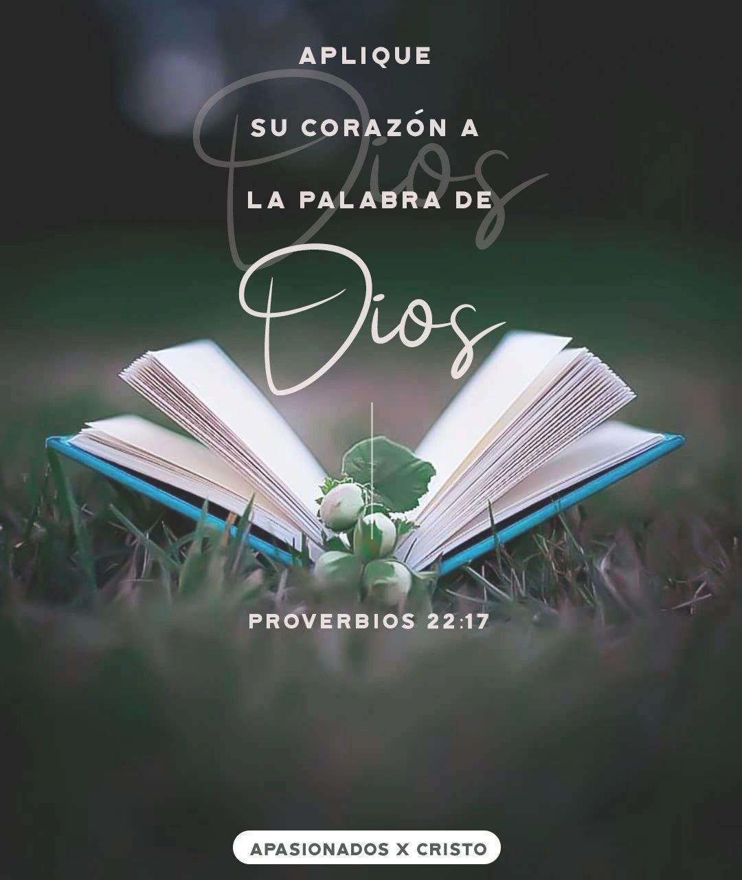 Aplique Su Corazón A La Palabra De Dios Biblia Proverbios Proverbios Proverbios 17 17