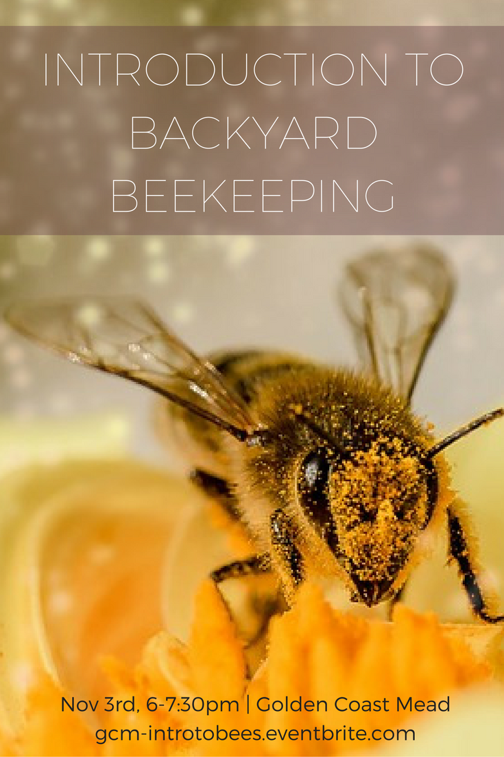 introduction to backyard beekeeping learn from local southern