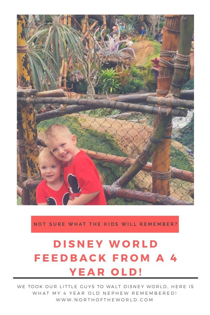 Disney World According to a 4 Year Old | Disney world tips ...