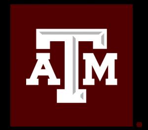Texas a&m essay prompts