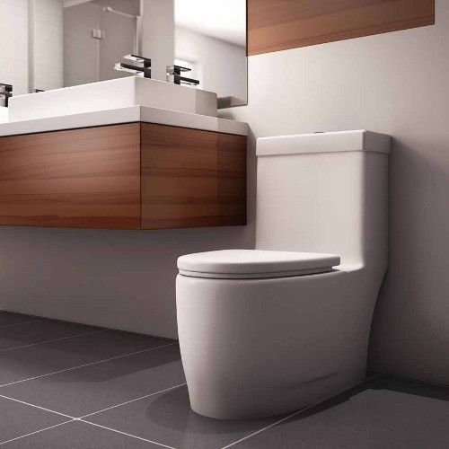 Saskatoon Bathroom Renovations: The Zen One-Piece Toilet With Dual Flush System Makes A
