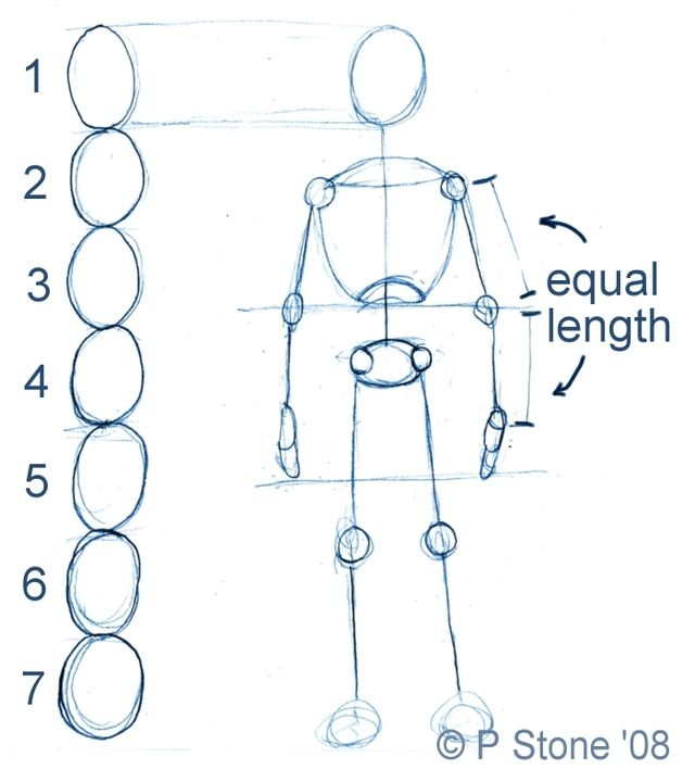 How To Draw A Basic Manga Character For Poses Anime Character Drawing Drawing Body Proportions Character Drawing