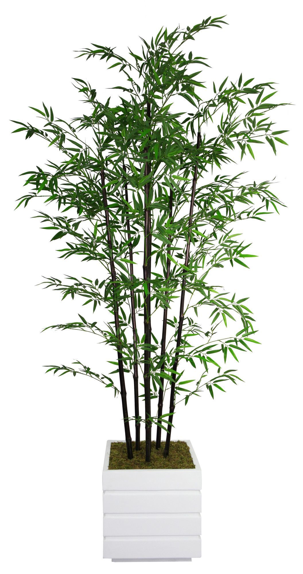 Features:  -No need to shop for a planter separately - comes complete with decorative planter.  -Artificial plants let you decorate without concern for water damage, trimming or soil.  -Bamboo plant.