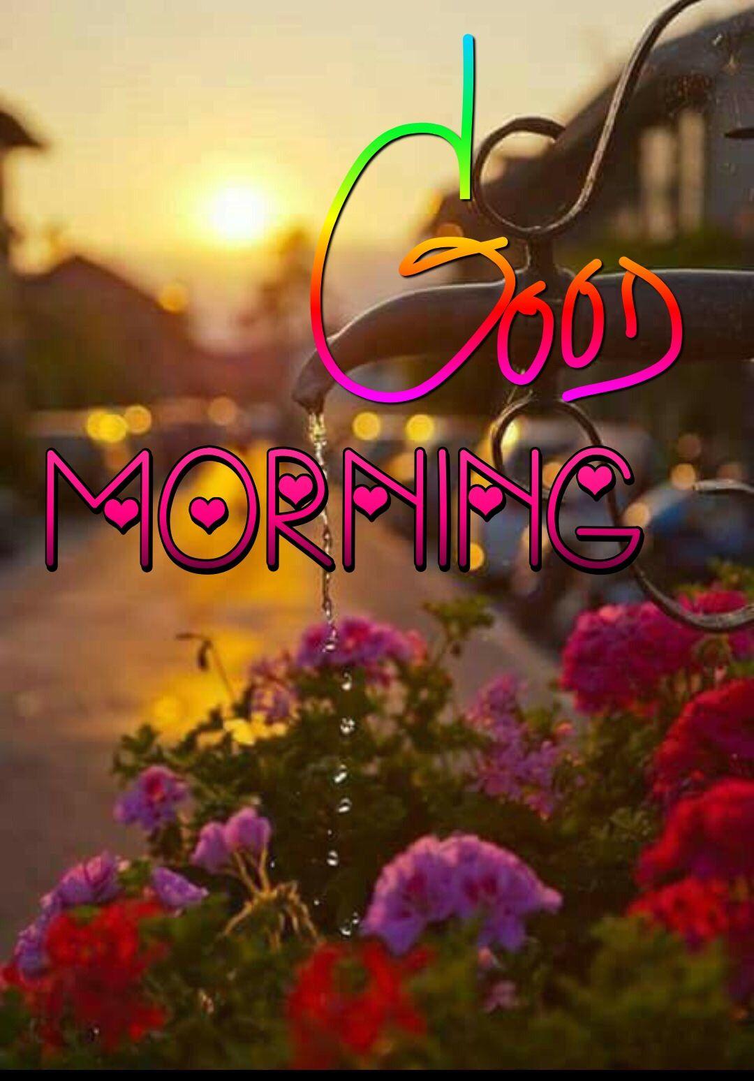Good Morning Greetings Good Morning Quotes Morning Quotes Happy Morning Quotes