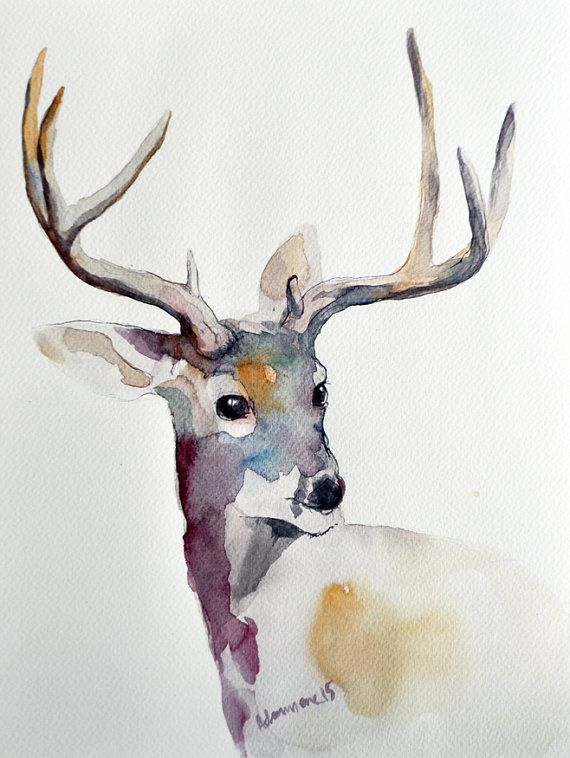 Peinture Aquarelle Originale Du Cerf Watercolor Paintings