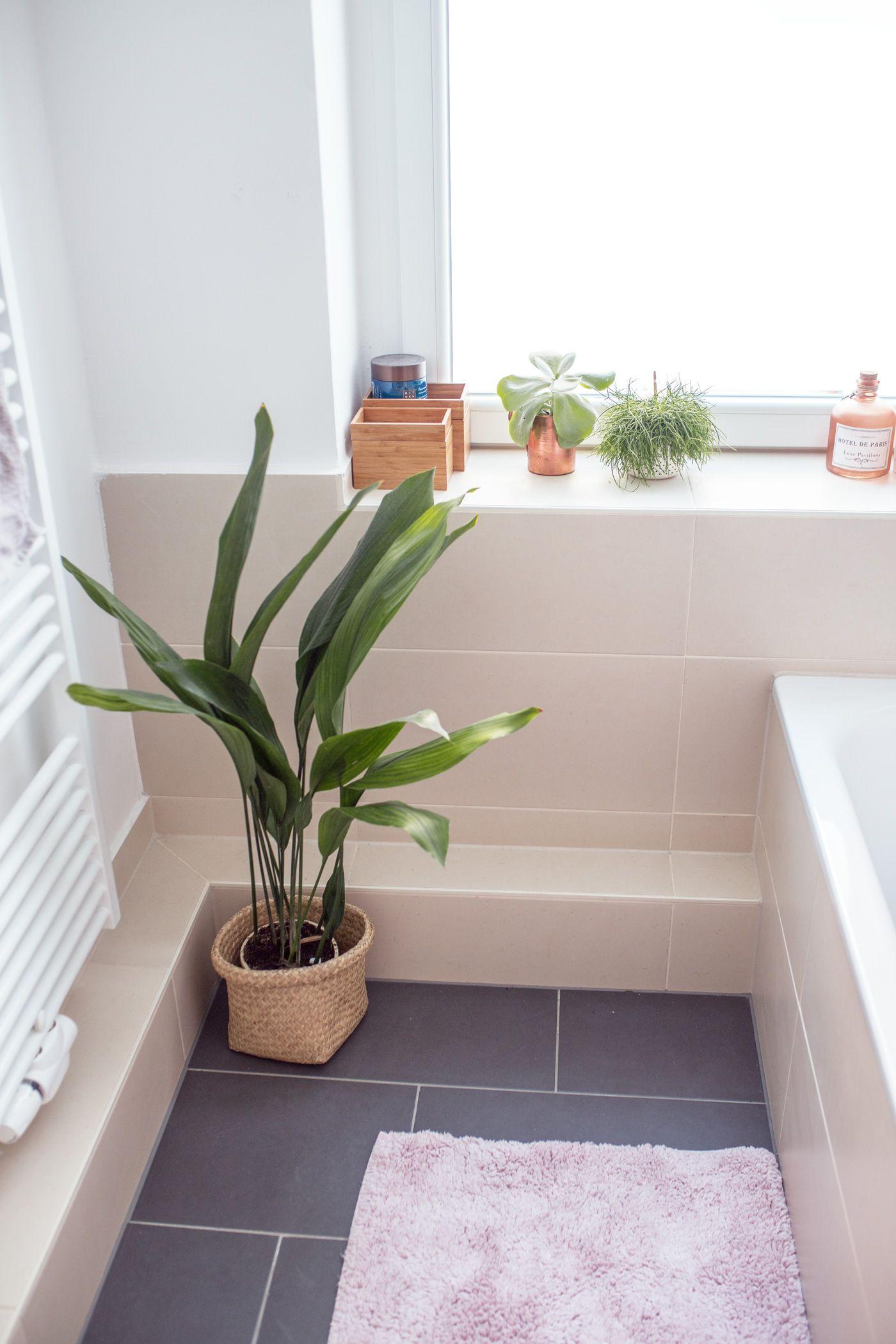 Das neue Badezimmer: Einrichten und dekorieren | Pinterest | Neues ...