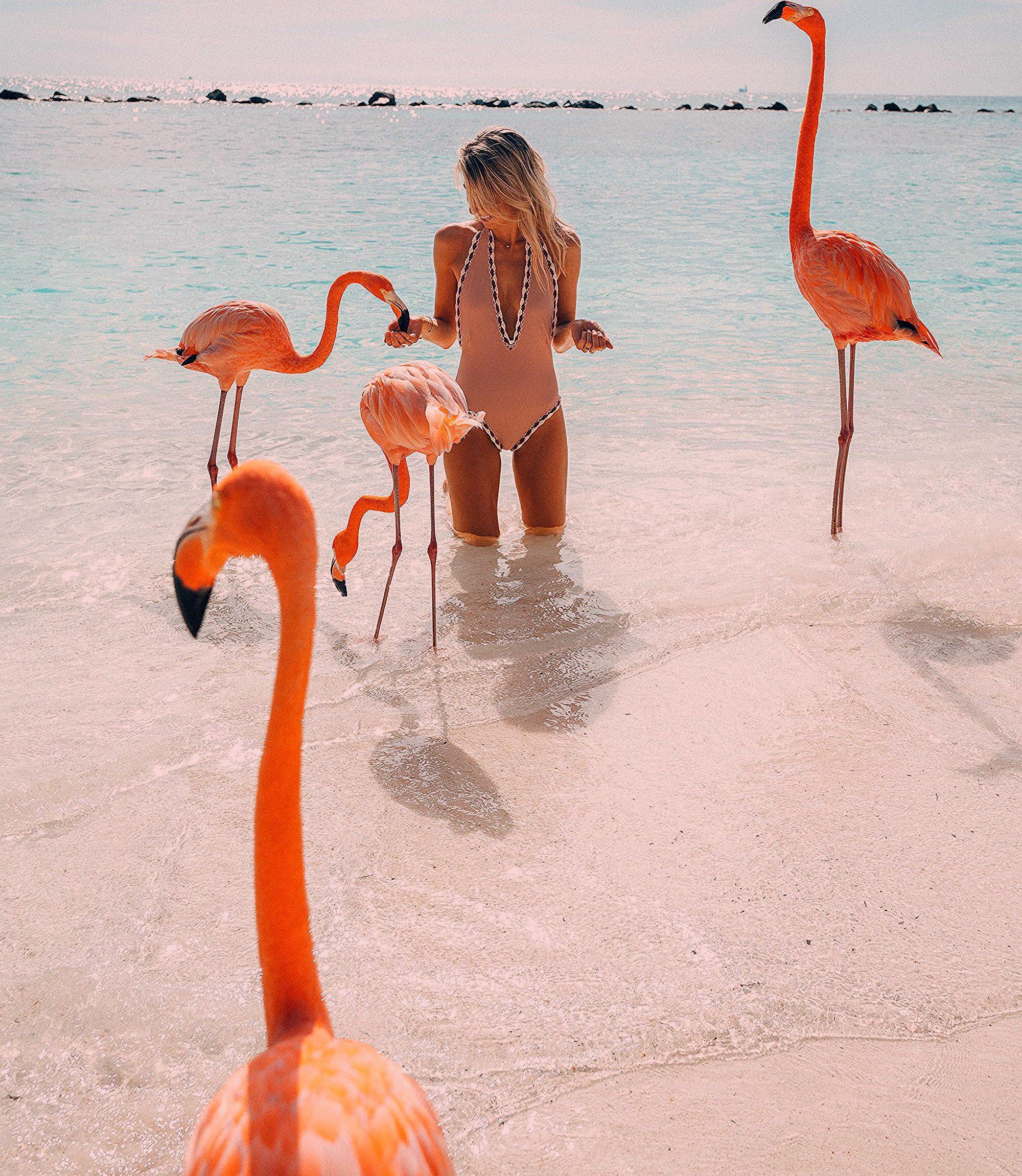 Photo of The Complete Aruba Travel Guide