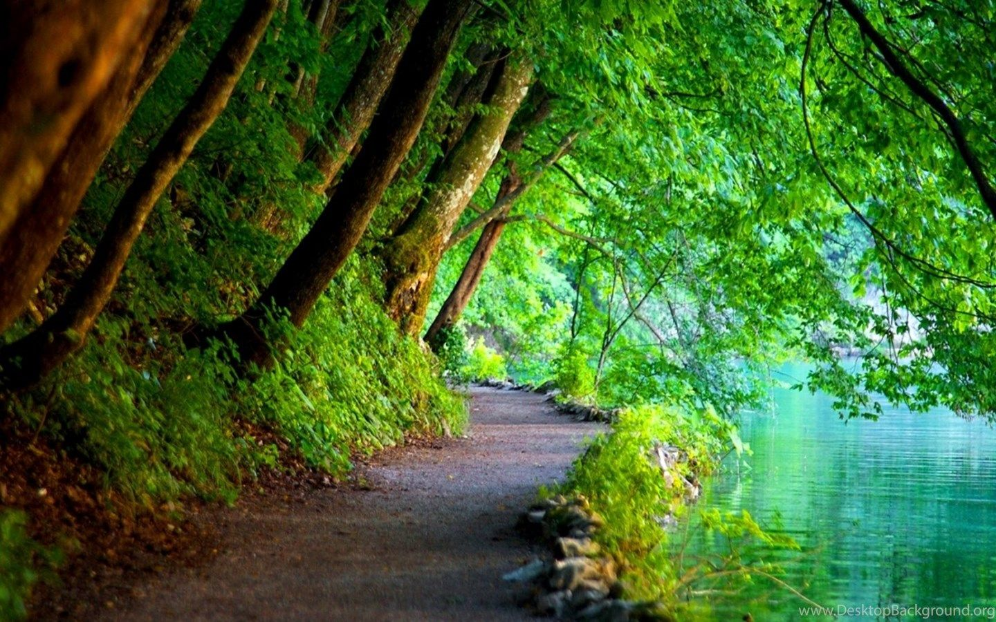 High Resolution Nature Backgrounds In 2020 Plitvice Lakes Nature Pictures Plitvice Lakes National Park