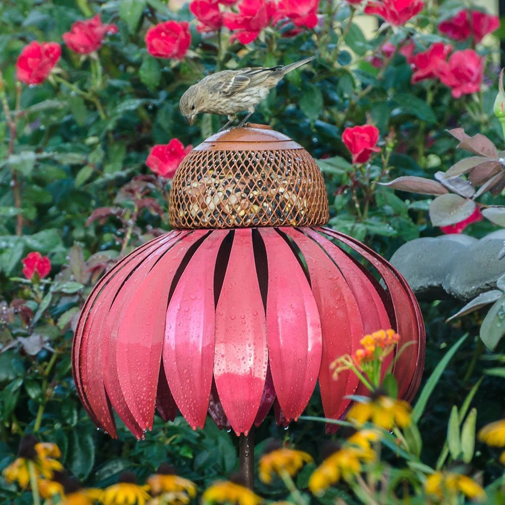 Coneflower Pink Metal Bird Feeder (Desert Steel Coneflower