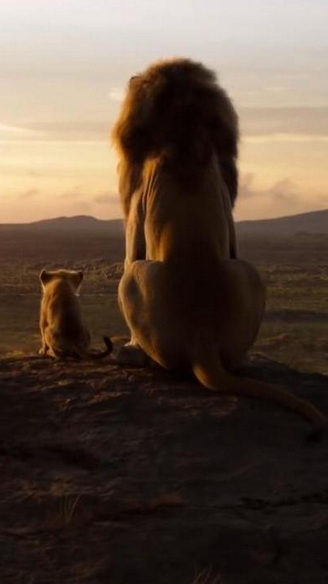 The Lion King 2019 Poster Movie Best Movie Poster