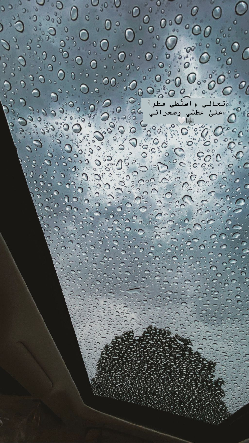 دبي Fashion Art شتاء مطر ليل كاظم الساهر طرب Night Dubai Winter Rain Iphone11pro Iphone Flying Bird Silhouette Rain And Coffee Bird Silhouette