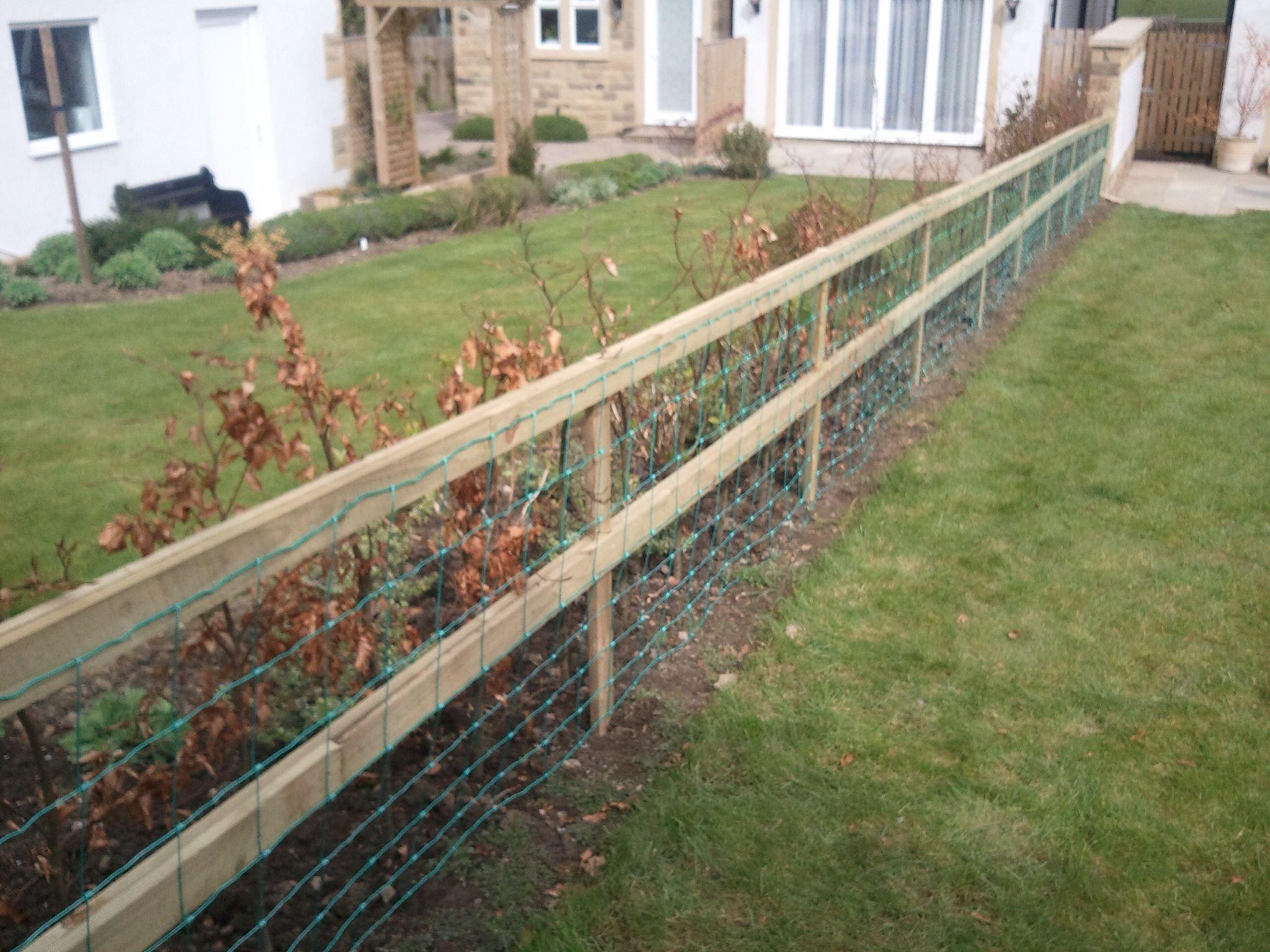 Dog Proof Fence Dog Proof Fence Dog Fence Dog Houses
