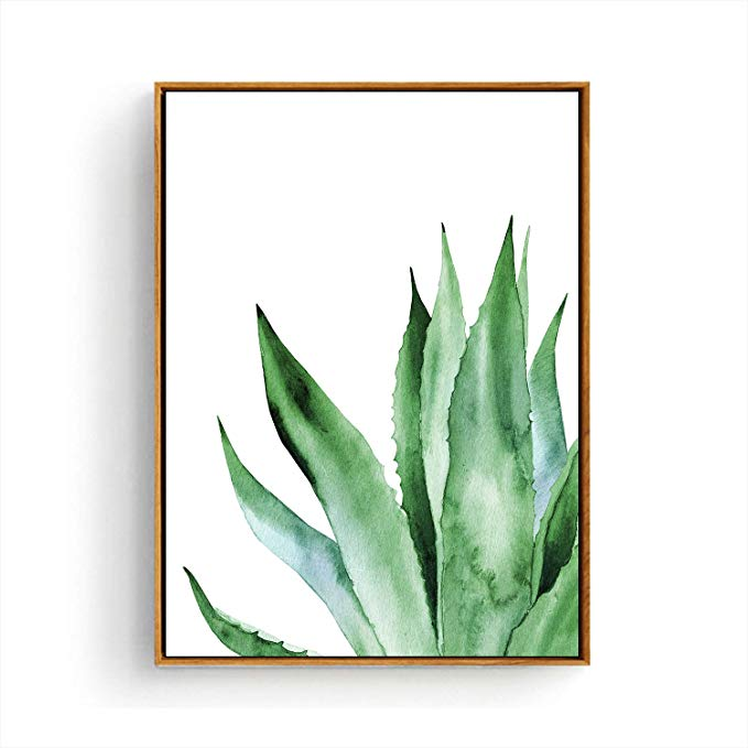 Amazon Com Hepix Canvas Wall Art Agave Succulent Wall Paintings Simple Tropical Leaves Print Framed Wa Succulent Wall Art Succulent Painting Plant Wall Decor